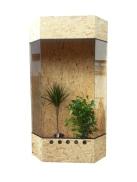Holz Terrarium